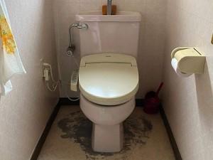 トイレ床はりかえ